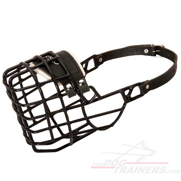 Wire cage rubber covered dog muzzle