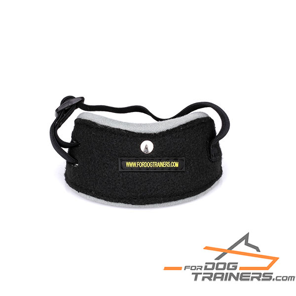 Ball arm pocket for dog's attention development