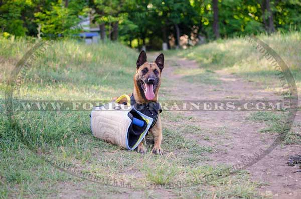 Bite Training Builder for Belgian Malinois