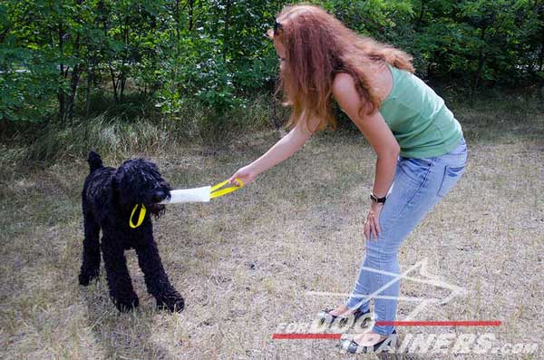 Black Russian Terrier Bite Training Tug