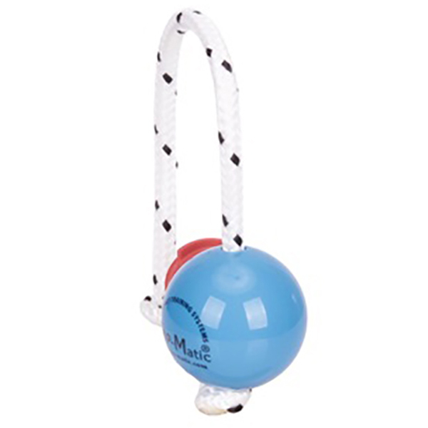 Mini Blue Dog Ball with Super Strong Magnets