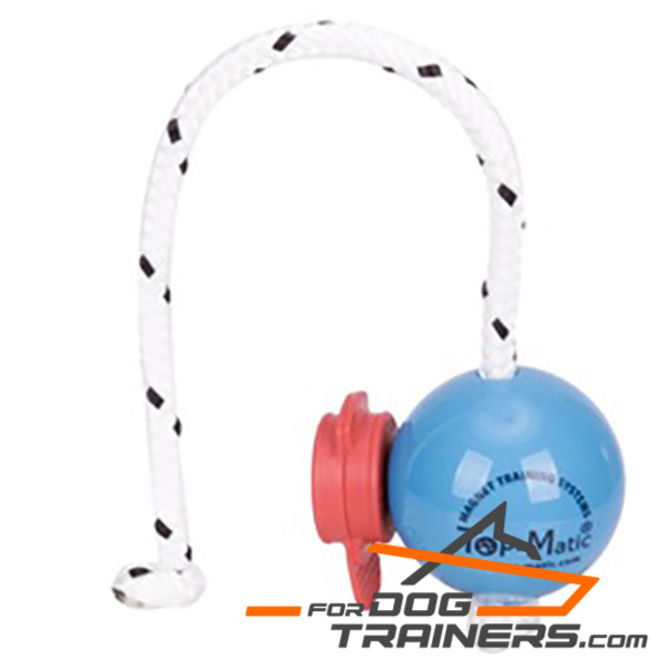 Top Notch Blue Dog Ball with Set of Red Magnets