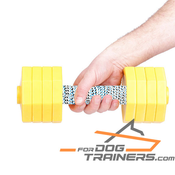 Training Dog Dumbbell with Removable Yellow Plastic Plates
