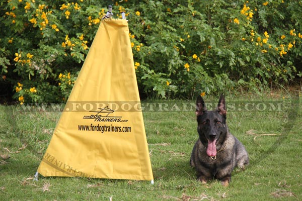 World-class Schutzhund Blind for puppies
