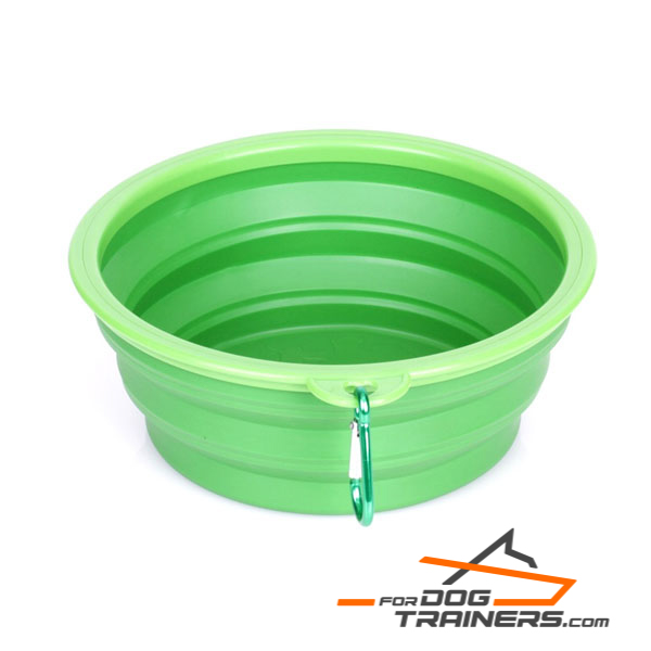 Dog bowl for food