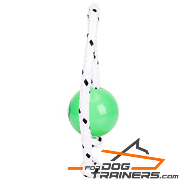 Top Notch Toy for Dogs