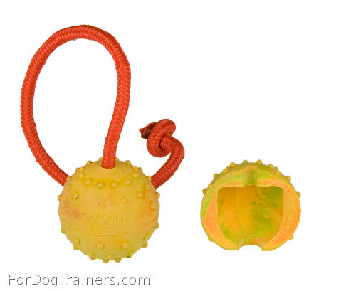 Training ball for dogs