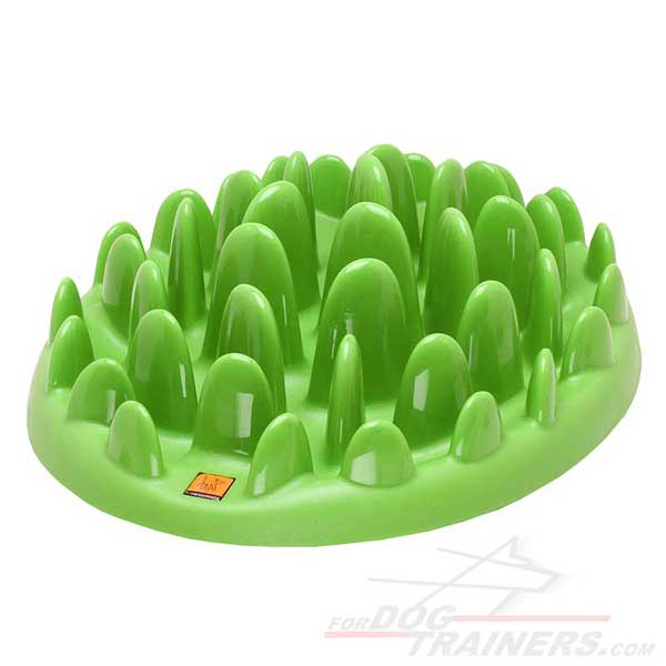 Pet feeder hard plastic