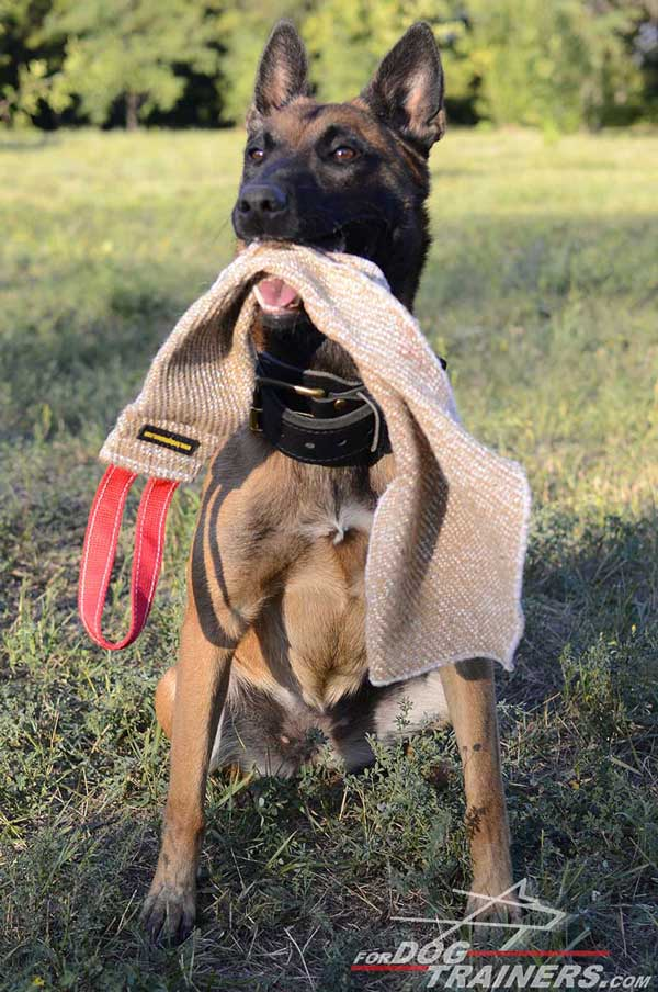 Dog-friendly Jute Bite Rag with Comfortable Handle