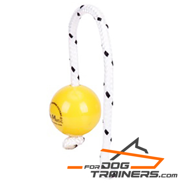 Magnetic Mini Dog Ball of Top Quality  Plastic