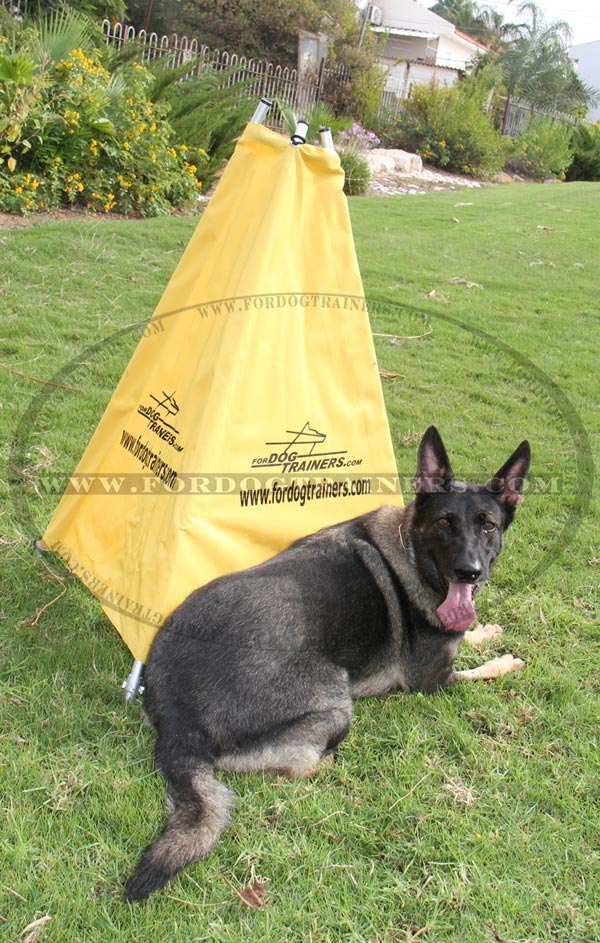 Schutzhund Blind with strong construction for puppies