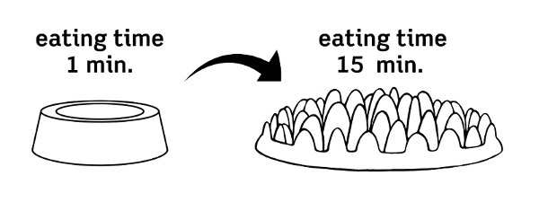 Illustration of Pet Feeder - Healthy Bite