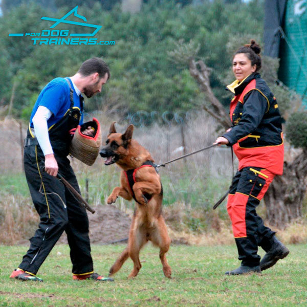 Dog Training Protection Suit for Professional Use