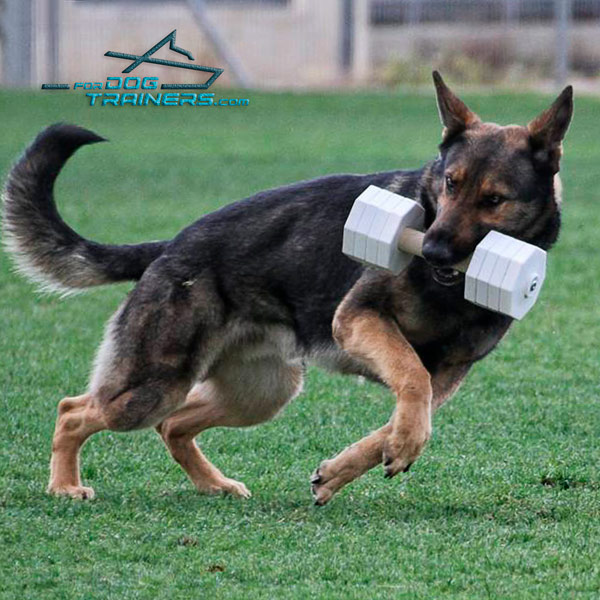Dog-safe Wooden Dumbbell Schutzhund III with Removable Plates