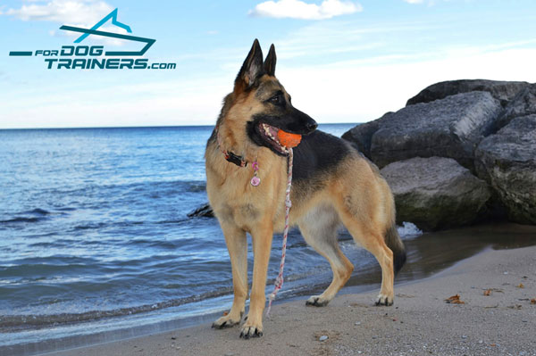 Dotted Rubber german Shepherd Toy Ball for Water Games and Training