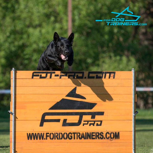 Dog Training Schutzhund Barrier for professional Use