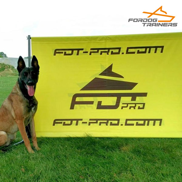 Pro Training with Schutzhund Dog Training Jump