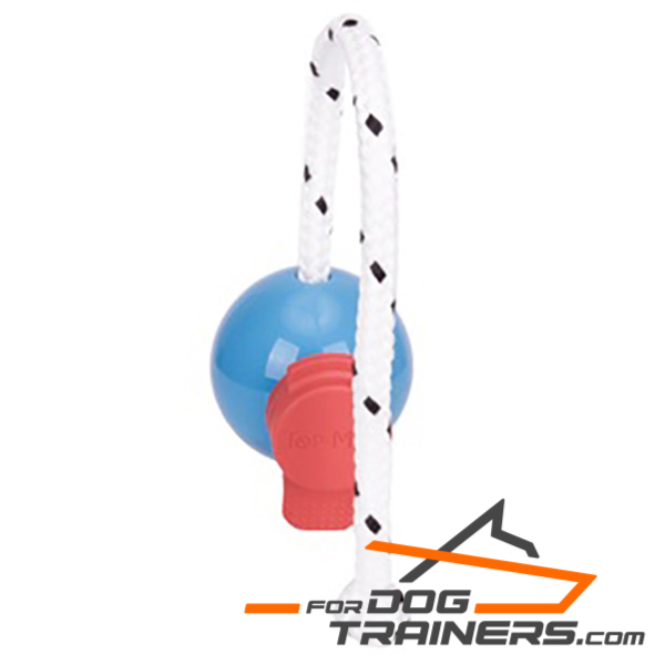Fun Dog Ball on Rope with Set of Magnets