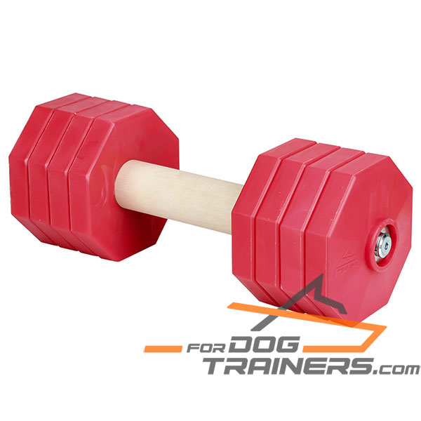 Reliable dog dumbbell with wooden stick