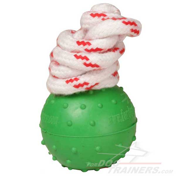 Water Ball Dog Toy of  Unsinkable Rubber