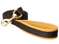 Nylon Dog Walking Leash with Comfy Handle