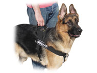 German Shepherd Control Nylon Dog Harness with ID Patches