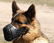 Handcrafted 'Dondi' Style Leather Dog Muzzle with Air Circulation Holes
