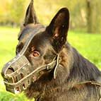 Lightweight Breathable Royal Basket Leather German Shepherd Muzzle