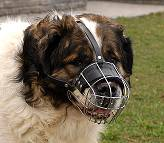 Kaukazian Ovcharka Wire Basket Dog Muzzles Size Chart - Kaukazian Ovcharka muzzle - M4light