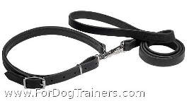 """Police / hunting"" dog leash and collar (combo) - L19"
