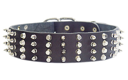 2 inch Leather Dog Collar with STUDS and SPIKES for Pitbull