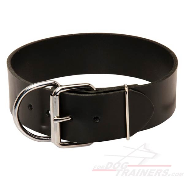 Leather Dog Collar with Nickel Plated Hardware