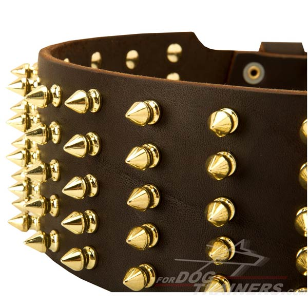 Brass Spikes on Adjustable Leather Cane Corso Collar