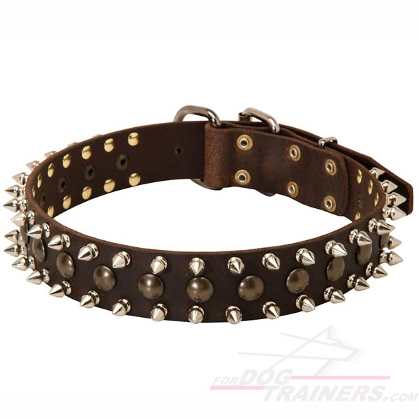 Fancy design of dog collar