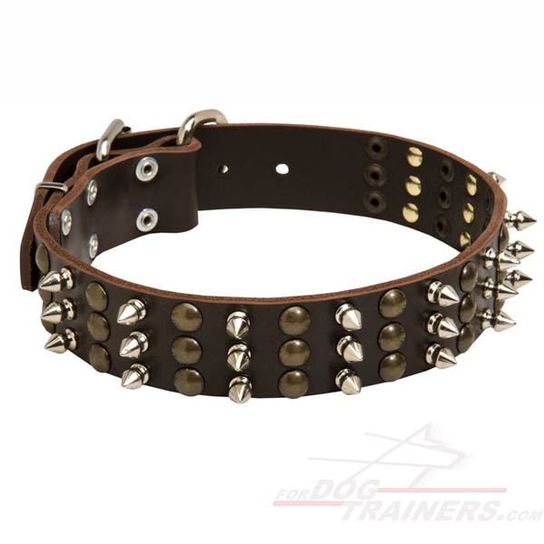 Leather Collar with spikes and studs