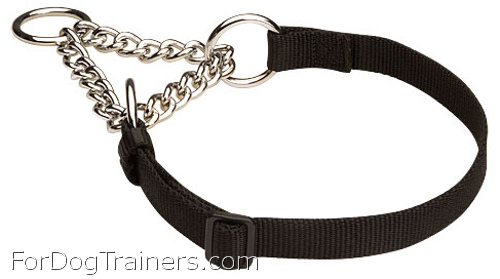 Training Martingale Dog Collar for All Weather Wearing with Chain - Click Image to Close