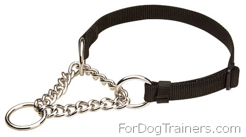 All Weather Nylon Martingale Collar