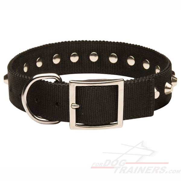 All Weather Nylon Dog Collar