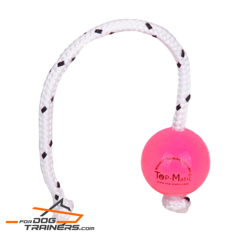 Pink Fun Puppy Ball for Professional Training