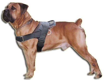 Boerboel Nylon multi-purpose dog harness pulling-Boerboel Mastiff