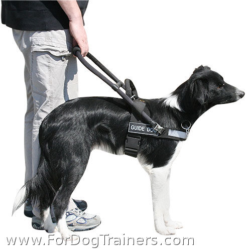 Highly Functional Dog Assistance Harness