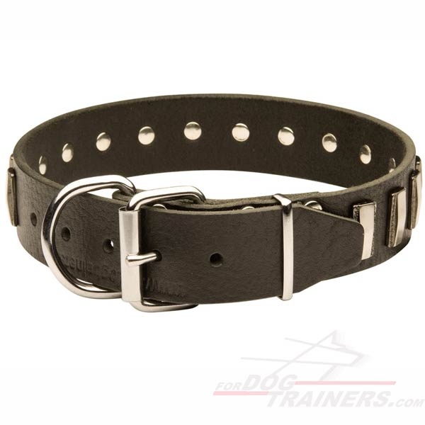 Cool design of Leather Dog Collar