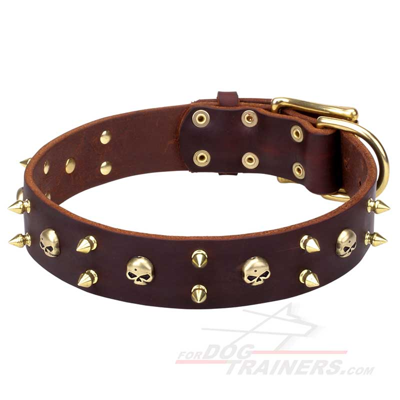 'Hard Rock' Leather Canine Collar with Brass-Plated Spikes and Skulls - Click Image to Close