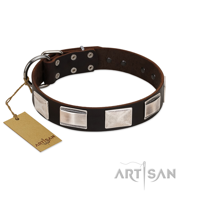 """Amazing Figures"" FDT Artisan Beautiful Brown Leather Dog Collar with Large Nickel Decorations"