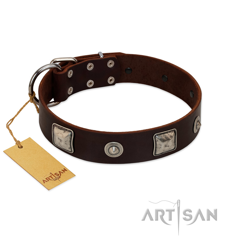 """Gothic Adornments"" FDT Artisan Amazing Brown Leather Dog Collar with Silver-Like Adornments"
