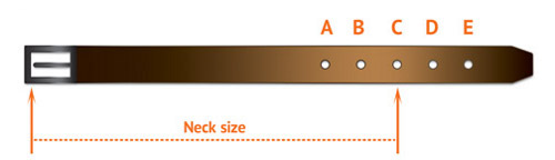 Sizing Diagram for Buckle Collars