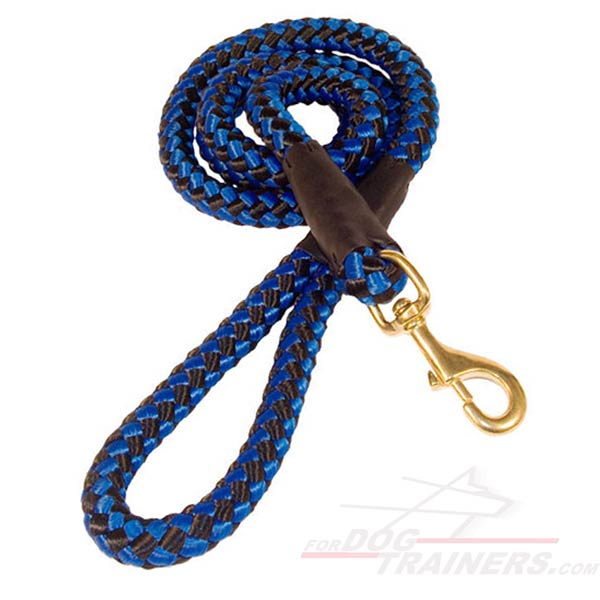 Practical dog lead