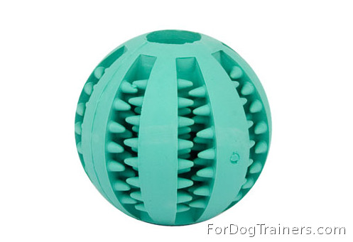 Dental Dog Toy
