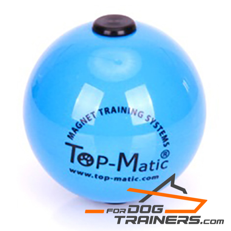 Blue Toy Ball with Magnet Made with High-Quality Plastic