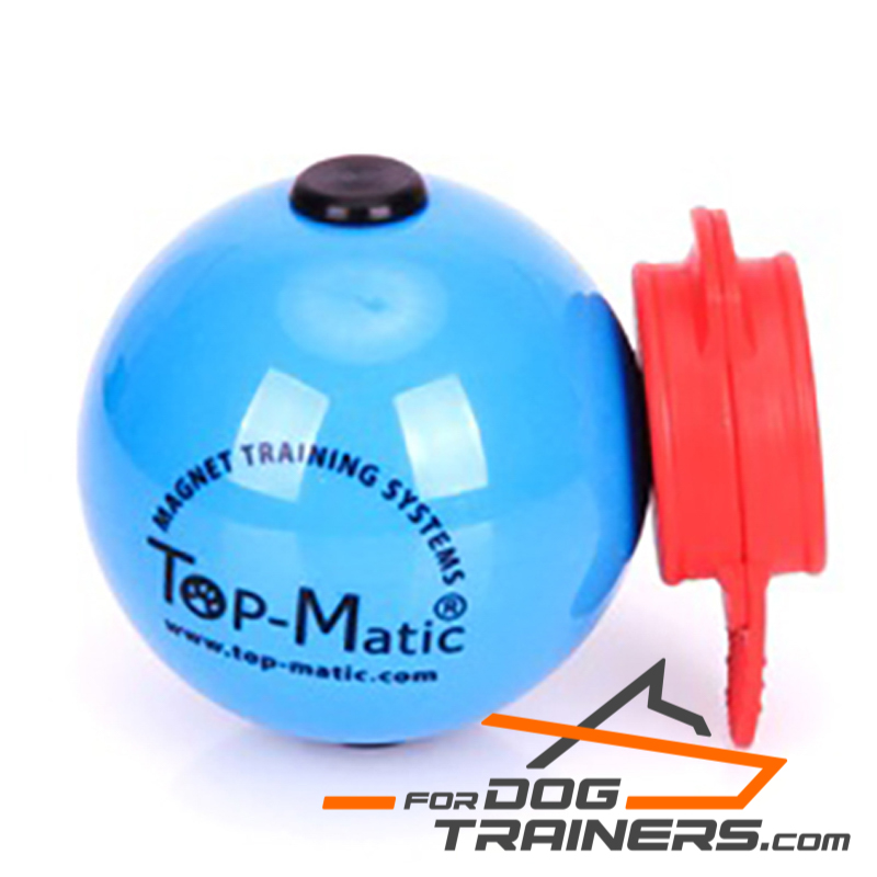 Best Quality Blue Magnetic Ball for Perfect Training